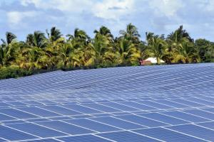 Photo of a little photovoltaic parc on Réunion Island