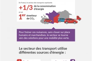 Infographie - Mobilite - Push
